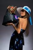 Mujer de Glamor con el terrier de Yorkshire Foto de archivo
