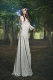 Mujer de hadas en bosque mágico Foto de archivo
