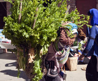 Mujer de Hani que lleva la carga pesada Imagen de archivo libre de regalías