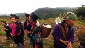 Mujer de Hmong de Sapa fotografía de archivo