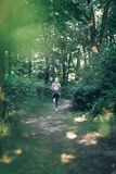 Mujer de la aptitud que corre en el parque de la mañana Imagen de archivo