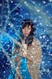 Mujer de la belleza en bosque del invierno Imagen de archivo libre de regalías