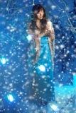 Mujer de la belleza en bosque del invierno Fotografía de archivo