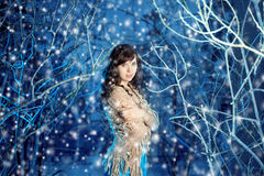 Mujer de la belleza en bosque del invierno Imágenes de archivo libres de regalías