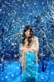 Mujer de la belleza en bosque del invierno Fotos de archivo