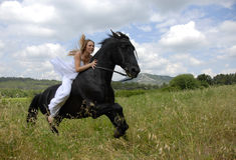 Mujer de la boda del montar a caballo Fotos de archivo