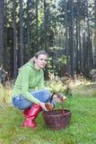 Mujer de la cosecha de la seta Foto de archivo libre de regalías