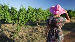 Mujer de la granja del vino almacen de metraje de vídeo