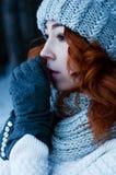 Mujer de la moda de los jóvenes en bosque del invierno Fotos de archivo