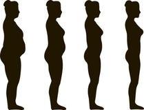 Mujer de la pérdida de peso libre illustration