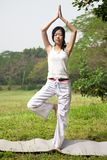 Mujer de la yoga foto de archivo