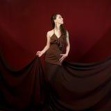 Mujer de lujo Imagen de archivo