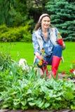 Mujer de mediana edad que planta las flores en el jardín de flores Foto de archivo libre de regalías