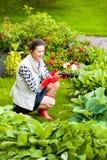 Mujer de mediana edad que trabaja en un jardín de flores foto de archivo