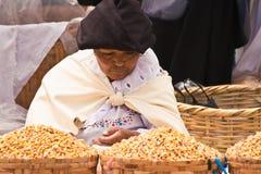 Mujer de mediana edad que vende aumentos Fotos de archivo