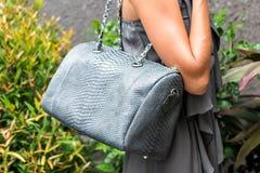 Mujer de moda que sostiene el bolso elegante de lujo del pitón del snakeskin Equipo elegante Ciérrese para arriba del monedero en Fotografía de archivo libre de regalías
