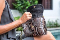 Mujer de moda que sostiene el bolso elegante de lujo del pitón del snakeskin Equipo elegante Ciérrese para arriba del monedero en Fotos de archivo libres de regalías