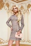Mujer de negocios atractiva de la belleza en cuerpo delgado perfecto del vestido de la moda Foto de archivo libre de regalías