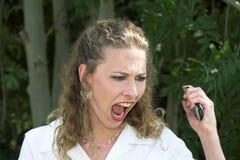 Mujer de negocios hermosa; locura Fotografía de archivo libre de regalías