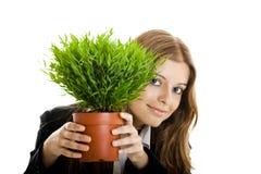 Mujer de negocios que sostiene un florero con una planta Foto de archivo