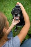 Mujer de Younf que peina hacia fuera la piel de un perro negro Foto de archivo