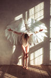 Mujer del ángel Imagenes de archivo