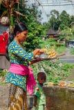 Mujer del Balinese que hace ofrendas en el templo, Ubud, Bali Fotos de archivo libres de regalías