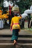 Mujer del Balinese que lleva la caja ceremonial con ofrendas en su cabeza, Ubud Imagen de archivo libre de regalías