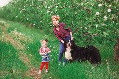 Mujer del bebé con el perro Berna en jardín de la primavera Imagen de archivo