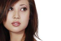 Mujer del brunette de Beautuful Foto de archivo libre de regalías
