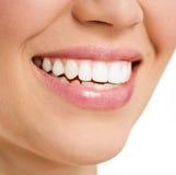 Mujer del cuidado dental Foto de archivo libre de regalías