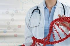 Mujer del doctor que obra recíprocamente con el filamento de la DNA 3D Imagen de archivo libre de regalías