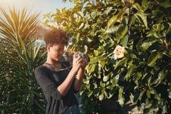 Mujer del inconformista del Afro que usa la cámara de la película del vintage en jardín Imagen de archivo libre de regalías