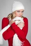 Mujer del invierno de la manera Foto de archivo libre de regalías