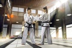Mujer del karate en la acción Fotografía de archivo libre de regalías