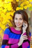 Mujer del otoño de Smartphone que habla en el teléfono móvil en caída Imágenes de archivo libres de regalías