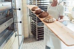 Mujer del panadero que presenta el pan a bordo en panadería imagenes de archivo