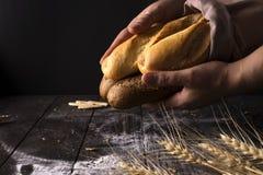 Mujer del panadero que sostiene la barra de pan orgánica rústica en manos - panadería rural Luz natural, aún vida cambiante Fotos de archivo libres de regalías