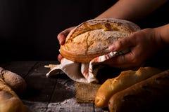 Mujer del panadero que sostiene la barra de pan orgánica rústica en manos - panadería rural Luz natural, aún vida cambiante Imagen de archivo libre de regalías