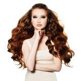 Mujer del pelirrojo Modelo de moda con el pelo rojo aislado Imágenes de archivo libres de regalías