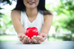 Mujer del retrato que lleva a cabo el modelo del corazón chica joven que lleva a cabo el corazón rojo foto de archivo libre de regalías