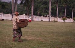 Mujer del trabajador con la cesta que camina en hierba La India fotografía de archivo