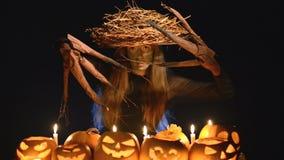 Mujer del traje de Halloween, muchacha del árbol con las calabazas almacen de video
