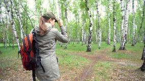 Mujer del viajero con la mochila que camina en la trayectoria en bosque almacen de metraje de vídeo