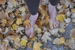 Mujer descalza que camina en hojas Imagenes de archivo