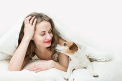 Mujer durmiente con el pequeño perro casero Imagen de archivo libre de regalías