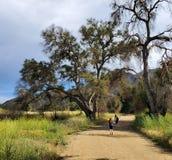 Mujer e hija que caminan junto en un rastro o un camino de tierra en el bosque al lado de un campo amarillo imágenes de archivo libres de regalías