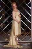 Mujer elegante de Preggy Foto de archivo libre de regalías