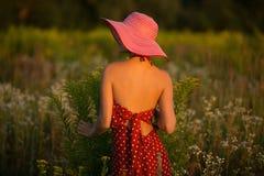 Mujer elegante en un sombrero entre wildflowers en la puesta del sol Imágenes de archivo libres de regalías