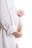 Mujer embarazada con la flor Imagen de archivo
